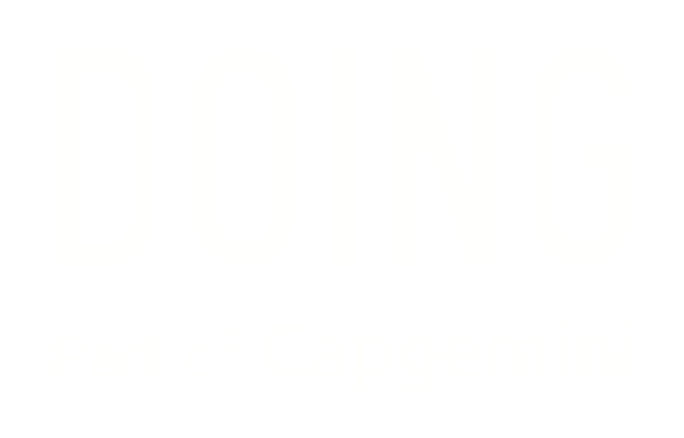 doing_capgemini_white logo